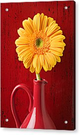 Yellow Daisy In Red Vase Acrylic Print by Garry Gay