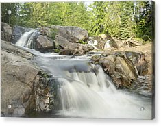 Yellow Dog Falls 4234 Acrylic Print by Michael Peychich