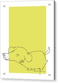 Yellow Dog Acrylic Print