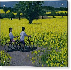 Yellow Field Acrylic Print by Andrew Macara