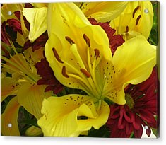 Yellow Floral Acrylic Print by Nancy Ferrier