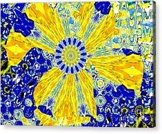 Yellow Flower On Blue Acrylic Print by Navo Art