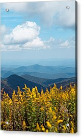 Yellow Flowers Along The Blue Ridge Mountains Acrylic Print by Kim Fearheiley