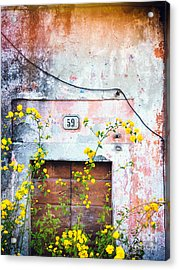 Yellow Flowers And Decayed Wall Acrylic Print by Silvia Ganora