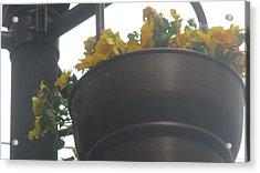 Yellow Flowers Hanging Acrylic Print