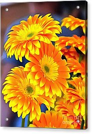 Yellow Flowers In Thick Paint Acrylic Print