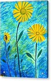 Yellow Flowers Acrylic Print by John Scates