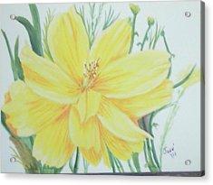 Yellow Garden Flower Acrylic Print by Hilda and Jose Garrancho