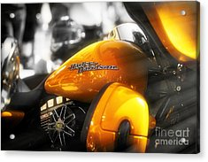 Yellow Harley Acrylic Print by Stefano Senise