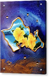 Yellow Hibiscus Hawaii State Flower #142 Acrylic Print by Donald k Hall