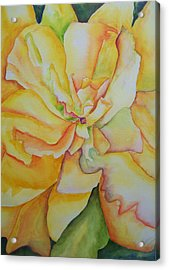 Yellow Hibiscus Acrylic Print by Sandy Collier