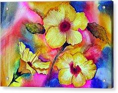 Yellow Hibiscus Acrylic Print by Tina Storey