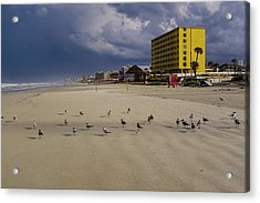 Yellow Hotel Blue Sky And Birds On Daytona Beach Florida Acrylic Print