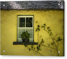 Yellow House County Clare Ireland Acrylic Print