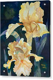 Yellow Irises Acrylic Print