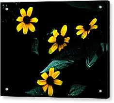 Acrylic Print featuring the photograph Yellow by Laura DAddona