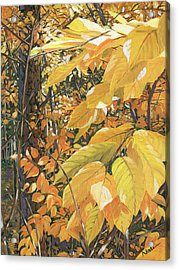 Yellow Leaves Acrylic Print by Nadi Spencer