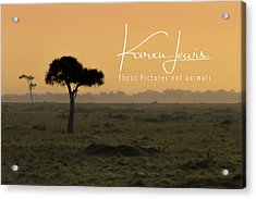 Acrylic Print featuring the photograph Yellow Mara Dawn by Karen Lewis