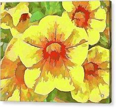 Yellow Million Bells Acrylic Print