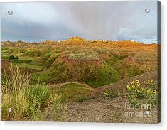 Yellow Mounds Morning Acrylic Print