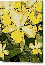 Yellow Orchids Woodcut Acrylic Print by Ann Tracy