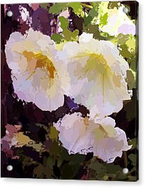 Acrylic Print featuring the photograph Yellow Petunias by Carol Grimes