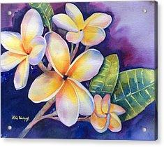 Yellow Plumeria Flowers Acrylic Print