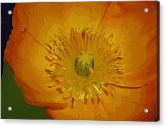 Acrylic Print featuring the photograph Yellow Poppy by Donna Bentley