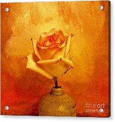 Yellow Red Orange Tipped Rose Acrylic Print by Marsha Heiken