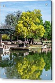 Yellow Reflection Acrylic Print