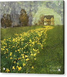 Acrylic Print featuring the photograph Yellow River To My Door by LemonArt Photography