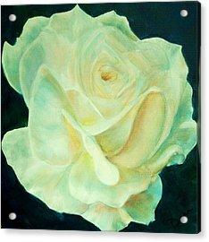 Yellow Rose 2 Acrylic Print by Dana Redfern