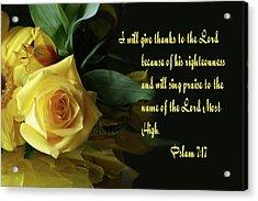 Yellow Rose Ps.7 V 17 Acrylic Print by Linda Phelps