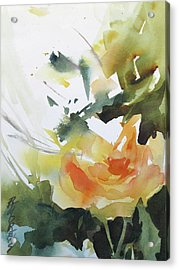 Yellow Rose Acrylic Print by Rae Andrews