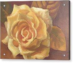 Yellow Rose Acrylic Print by Sharon Weaver