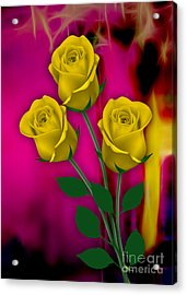 Yellow Roses Collection Acrylic Print by Marvin Blaine