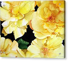 Yellow Roses Acrylic Print by Patrick McClintock