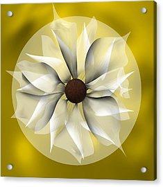 Yellow Soft Flower Acrylic Print