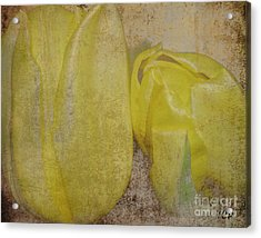 Acrylic Print featuring the photograph Yellow Strands by Traci Cottingham