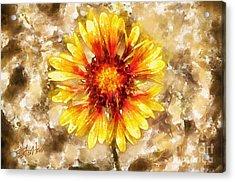 Yellow Sunshine Acrylic Print by Shirley Stalter