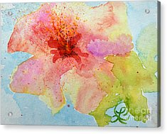 Yellow Tinged Hibiscus Acrylic Print by Lynda Cookson
