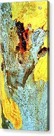 Yellow Tree - And  Ant  Australia Acrylic Print