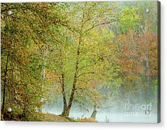 Acrylic Print featuring the photograph Yellow Trees by Iris Greenwell