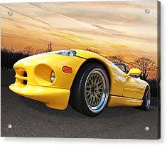 Yellow Viper Rt10 Acrylic Print by Gill Billington
