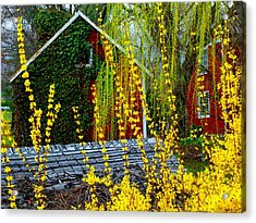 Yellow Weeds Acrylic Print by Michael L Kimble