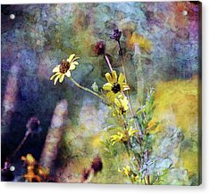 Yellow Wildflowers 3230 Idp_2 Acrylic Print