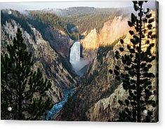 Yellowstone Falls Acrylic Print