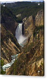 Yellowstone Lower Falls Acrylic Print by Patrick  Flynn