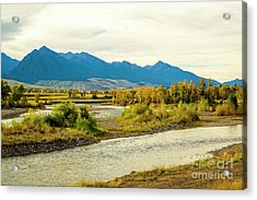 Yellowstone Morning Acrylic Print