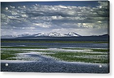 Yellowstone Mountain Scape Acrylic Print